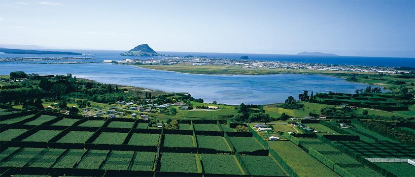 bnr_newzealand